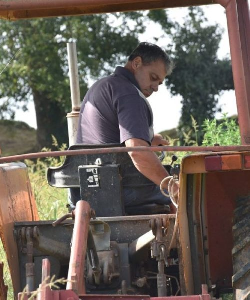 labourage ferme de Berdin Banos